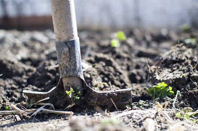 Quels équipements pour entretenir son jardin ?