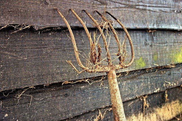 Fourche de jardinage